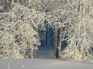 снежный рай