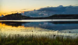 Вечер на озере. Панкратово.